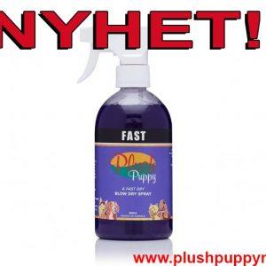 fast_ny
